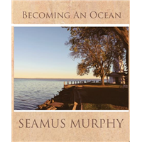 Becoming An Ocean by Seamus Murphy